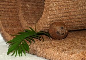 матрас из кокосовой койры